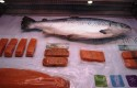 Invermar products on display at the China Fishery & Seafood Expo 2013. Photo: Undercurrent News