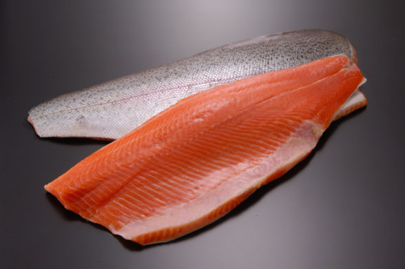 Farmed salmon prices in Scotland dive, Norway's stay at two-year lows | Undercurrent News