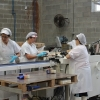 Spain: Producing artisanal sardines at Cuca