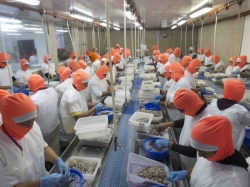 Ecuador: Omarsa's shrimp processing plant and organic farm