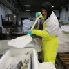 In Pictures: A day in the life of Seattle Fish Company