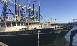 Carlos Seafood fishing vessels
