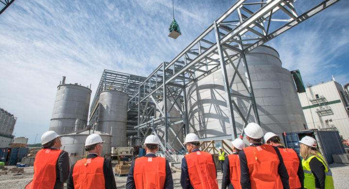 Algal oil maker to target non-GMO demand, shrimp, US RAS as